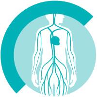 Gefäßuntersuchungen in der Radiologie in Gießen - Diagnosezentrum